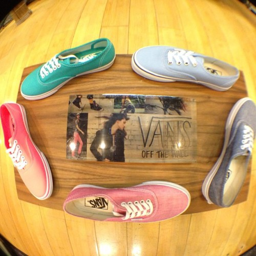 Great selection of summery Vans in stock at the VB shop! 👟👟 #vans #newkicks #summer #colors #fashion #cute #love #whalebonesurfshop