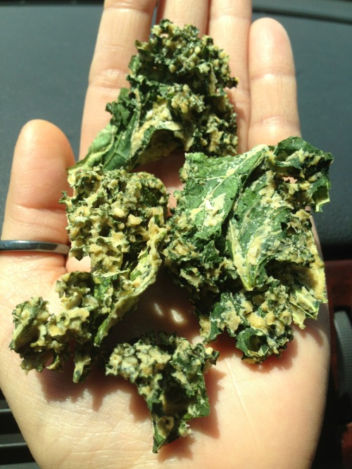 Raw/Organic Ranch Kale chips