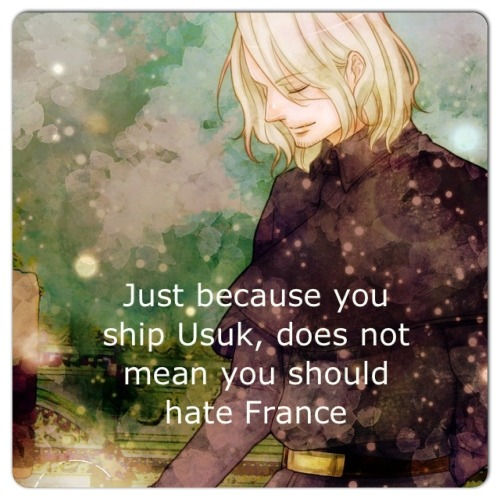 emii-marii:  If you ship usuk and love france, you are amazing XD  he can be really awesome x3
