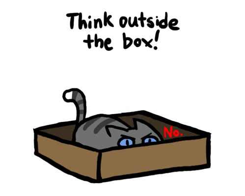 catsincuteplaces:  Think Outside the Box