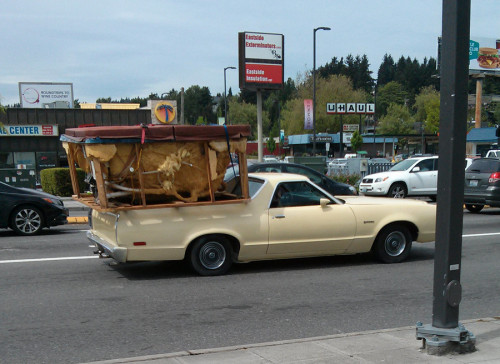 Just a hot tub on the back of a Ranchero.. #SMH!