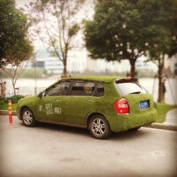 grass-car-is-this-the-chinese-interpretation-on