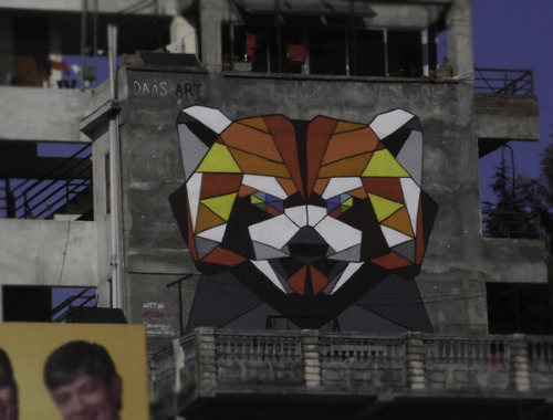 Red Panda mural by DAAS in Kathmandu, Nepal near the Bagmati Bridge.  This mural is part of the Kolor Kathmandu Project.