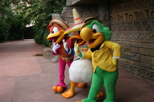 Limited Time Magic- The Three Caballeros
