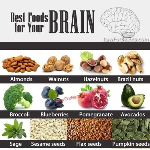 Brain food for STUDENTS!