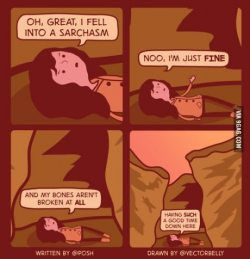 9gag:  Fell Into A Sarchasm