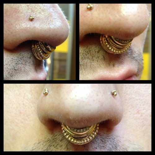 joshverdi:  Septum got a fat upgrade today! #mariatash #fillmyholelikeawhore