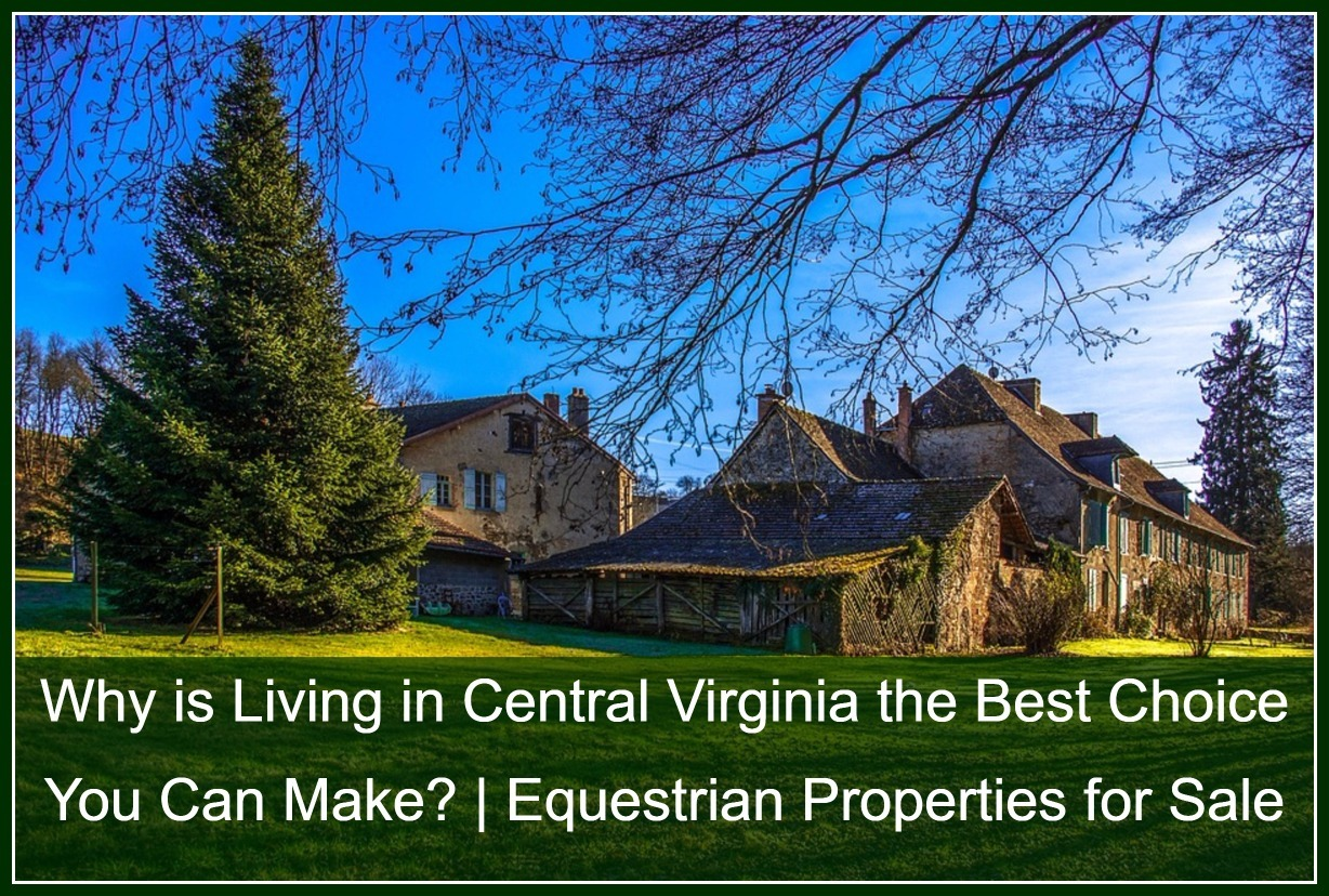 Equestrian Farms for Sale in Central Virginia - Find a home for yourself, your family and even your horses in Central Virginia!