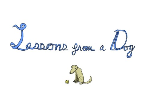 descepter:  Lessons from a Dog by Patrick Moberg