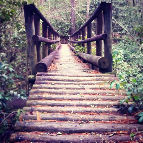 Bridge on the Chattooga River Trail. #hiking #backpacking