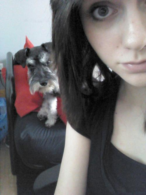 ashleyosity:  Caesar. Creepin'. :3  Awesome schnauzer in the background!