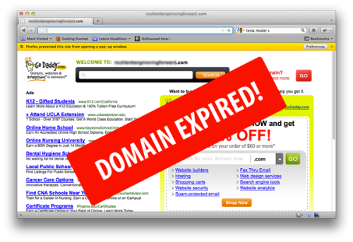 A Helpful Purchase Guide on Website Domain Names Before ExpirationView Post