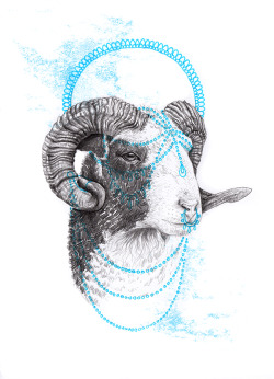 """Sacrifice iii"" Graphite and Ink.Redid this one as the first goat looked really creepily happy."