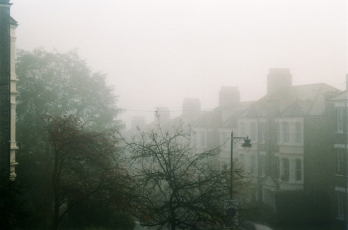 Into the fog by but_those_are on Flickr.