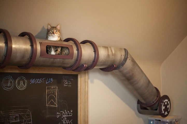Cat transit system! Interior designer Jillian Northrup and her husband architect Jeffrey McGrew, has designed a transportation tube fit to line the interior walls of their office, stretching around the room, past desks, and over an armoire. The aesthetically complementing tube even features its own tiny windows for traveling cats to take a break and look around.