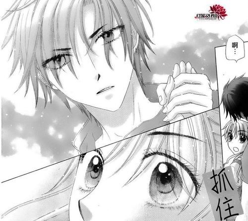 natsumeislove:  fyeahgakuenalice:  GAKUEN ALICE CHAPTER 178 (SPOILER) Four years after leaving Alice Academy, Mikan has returned to her normal life in her village. She is now sixteen-years-old and is a popular second-year high school student. Mikan is troubled by the fact that she has no memories from the two years when she was in Alice Academy. Her grandfather told her that she was sick during that time, but Mikan is clearly skeptical because everything from before she entered in the fifth grade are still intact. When she arrived home, she had no recollection of what and where Bear came from, and was confused by the letter that Kaname had left for her to take care of Bear. As she is walking to school with two friends, Mikan admitts to her friends that at first, she was scared that Bear can move and do household tasks. Her grandfather assured her that Bear is harmless, but Mikan was scared because Bear never moved in front of anyone but her and her grandfather, leading to her being seen as a weird girl to the villagers. However, as she got to know Bear, she became close to it and grew to love it again. Mikan confirms to herself that despite having no memories from when she was ten to twelve years old, she has a happy life. Unkown to her, a mysterious person is watching her from the distance. At school, her teacher announced that there have been recent kidnappings of young girls in the village and the kidnappers appear to be foreign. Mikan is surprised of the news because she always thought of her village as a peaceful place to live. Mikan gets in trouble for daydreaming and is warned by her friends that if she is not careful, she may be kidnapped as well. It is revealed that Mikan's village is being protected by a barrier created by the academy, which explains why no enemy organizations have been able to find her. However due to the recent kidnappings, a foreign group has managed to find out Mikan's identity and are trying to capture her. While walking home, a male classmate approaches Mikan, and her friends note that he likes her. Mikan is not interested in dating and gently rejects him. Mikan has been asked out by boys many times before but she rejected all of them because she says that she has no experience in love and dating, but she feels that she did have someone she loved dearly during the time she lost her memories. So when someone confesses to her, she compares it to that strange feeling and she believes that she is waiting for the person she feels that way towards. They stop by the sea and enjoy themselves, and Mikan feels like she is watching the sea in place of the person who wants to be with her. She remembers that each time she has a happy moment, she starts to cry, but not happy tears, tears of sadness that something is missing in her heart. Mikan beleives that it has something to do with the person she had once loved and wonders who he was. Just then, they are attacked by kidnappers who grab a hold of her friends. Mikan tries to save them but she is clearly outnumbered. The kidnappers say that Mikan is the sole target. As she struggles to save her friends and protect herself, a powerful blaze of fire comes over the kidnappers, leaving Mikan stunned. She looked up to see the mysterous person and suddenly has a flashback of the moment she first encountered Natsume, which leaves her confused. She is saved once again from more kidnappers by Narumi, and again, Mikan has a flashback, of when she first met Narumi. But she doesn't remember him and thinks he is one of the kidnappers, much to his amusement. When Mikan runs to save one of her friends, the firend beats the kidnappers unconscious and her face changes, revealing to be Goshima, which shocks Mikan. Mikan has no idea who Goshima is and begins to panic over the situation. Goshima admits that he was sent to protect Mikan when she left the academy and has been posing as a classmate. Mikan accidently falls over and the other mysterious person catches her. When she turns around, she finds that its Natsume.   OMG THANK YOU SO MUCH FOR ENLIGHTENING US ABOUT WHAT THE HECK IS HAPPENING IN THIS WONDERFUL CHAPTER. TT_TT *endless tears*