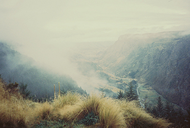 savvydarling:  untitled by coolhandluke on Flickr.