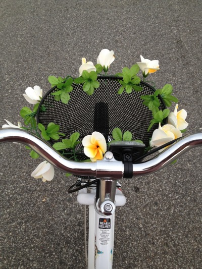lance-toi:  Doing this to my new bike basket today