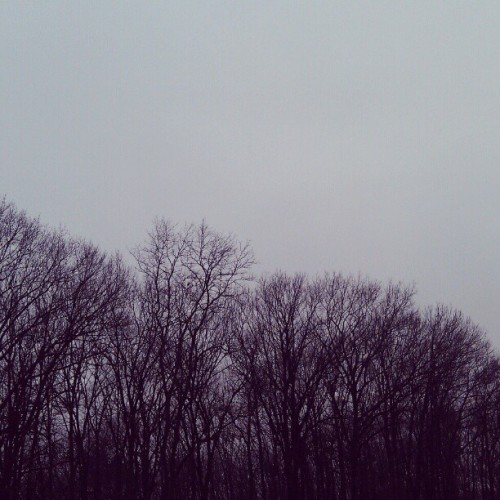 al-khowarizimi:  It's a greyscale kind of day.