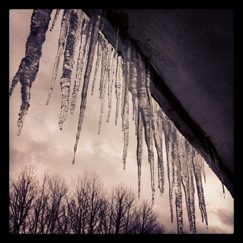 Freeze. Thaw. #winter #icicles #february #pittsburgh
