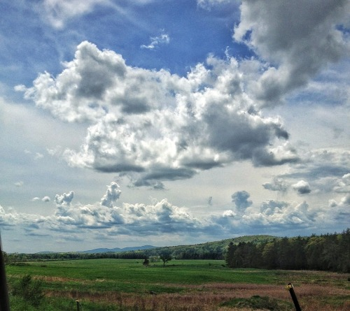 gdav22:  Great clouds on a great day