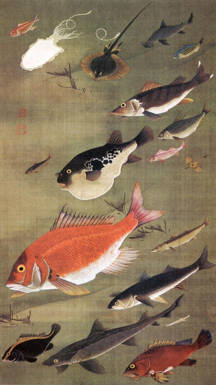 mucholderthen:   Itō Jakuchū 伊藤 若冲   (1716–1800)Japanese painter of the mid-Edo period  From Wikipedia:Many of his paintings concern traditionally Japanese subjects, particularly chickens and other birds. Many of his otherwise traditional works display a great degree of experimentation with perspective, and with other very modern stylistic elements.  [ via japaneseaesthetics ]
