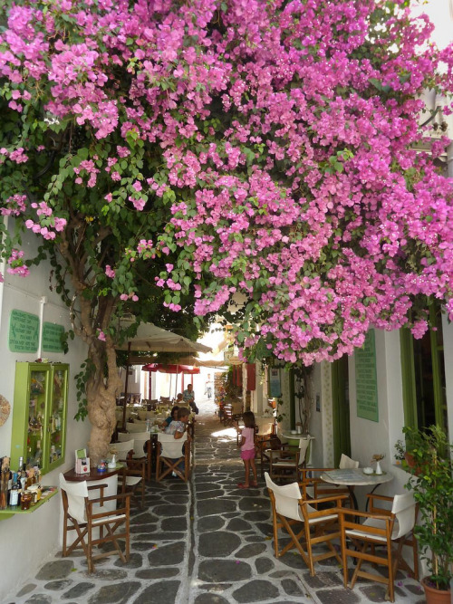 Pretty cafe, Paros island By Patrick JCH