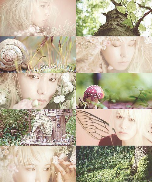 Super Junior meets myth - 05 Sungmin / Faerie