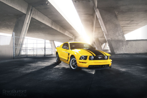 All hail the king Starring: '06 Ford Mustang GT (by Brent Burford Photography)