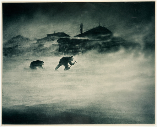 godsdeathbed:  Blizzard at Cape Denison ~ Cape Denison, Antarctica, c. 1912. Frank Hurley. carbon print by State Library of New South Wales collection on Flickr.