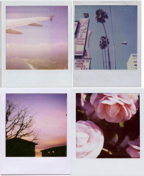 kali-bliiss:  kali-bliiss:  polaroids  Please don't delete the source :)