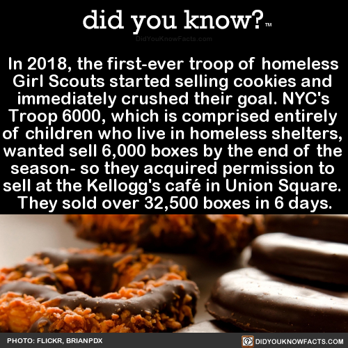 in-2018-the-first-ever-troop-of-homeless-girl