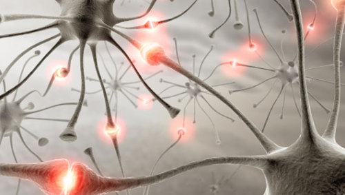 Normal brain activities cause DNA damage, too The breaks in DNA strands 'may be part of normal learning' that we all experience.