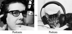 nprfreshair:  Good morning, kittens. Can you spot the difference or have you not had your coffee yet?  - Heidi wnyc:          (via)
