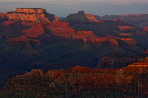 sunset at hopi point. grand canyon.