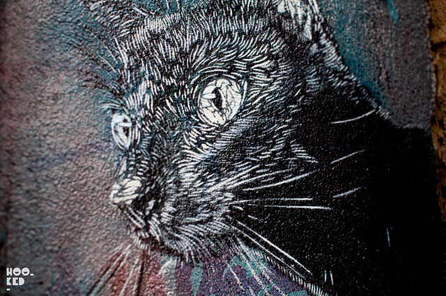 C215 on Flickr.