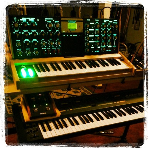 Minimoog synth goodness… maple and jade.