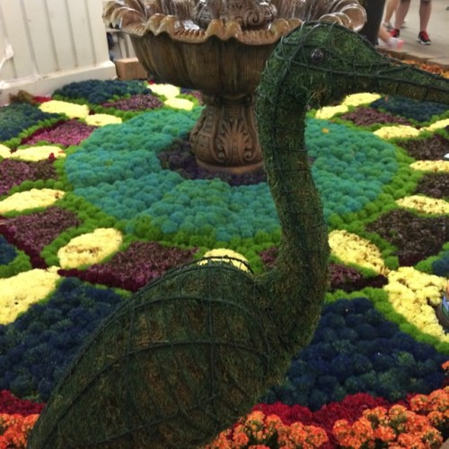 Beautiful exhibit this year in Agriculture Building. #mn #statefair #mnstatefair #stpaul #summerlove #summer