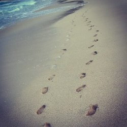 footsteps in hawaii.