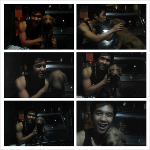 Missing my labradoodle #ashley! Pano ba natuturuan ang aso? hirap imaginen eh! HAHA XD