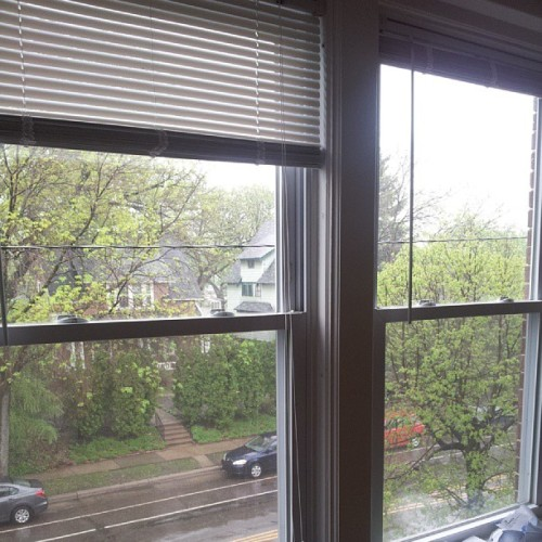 View of the rain out of the living room windows. #lifeinstpaul