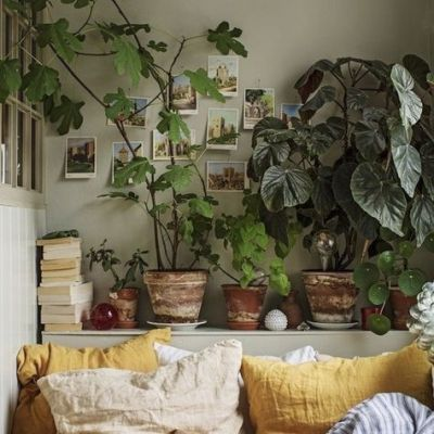 #bedroom and plants image  #https://data.whicdn.com/images/357281248/original.jpg  #