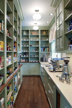 georgianadesign:  Exceptional butler's pantry (with actual pantry) in North Carolina. Designer Kathryn Long.