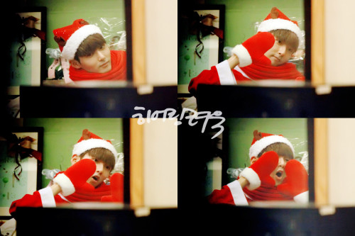 Super Junior: Ryeowook - Sukira (121225) (2)