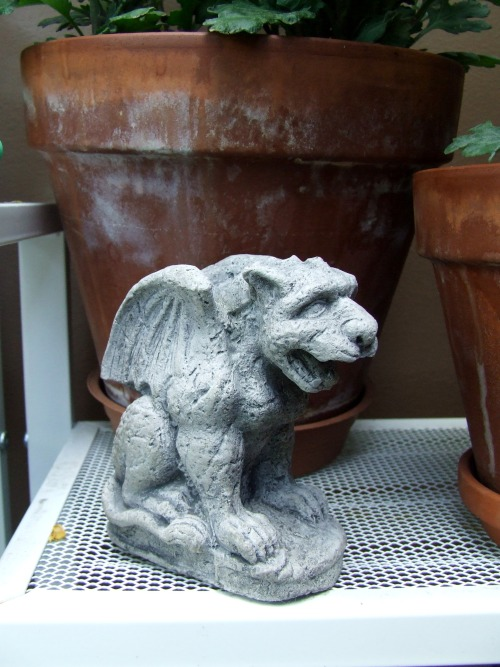 Godric Edvard Gaebora  The Gargoyle (or more technically appropriate, Chimera) I bought at the Renaissance Faire from a salesman that let me have it for $15. It looks like a dog or panther mixed with an eagle. I wanted to name it Edvard from the start, but I liked Godric better for a first name. And I added Gaebora (the last name of the owl from the Zelda games) for rhythmic effect.
