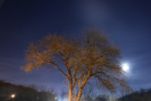 December 30, 2012 Night Sky Brentwood, Tennessee