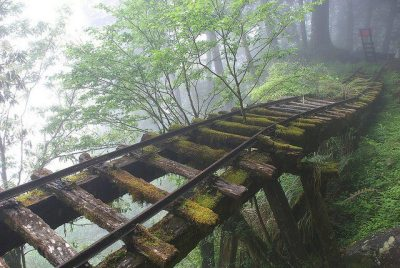 snowier:     immortalbears:  diaphanee:  Abandoned Rail Bridge, Japan.  i'm just really curious is there anybody else who takes the rail tracks out of its mechanical context and started re-imagining it into some mythical sort of road or is it just me