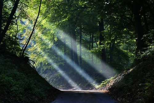 Sun Rays, Dancersend, England photo By algo