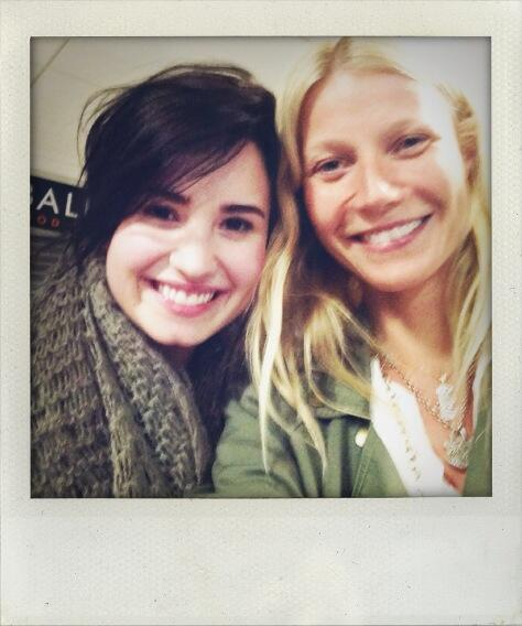 Demi Lovato And Gwyneth Paltrow Took The Same Flight; Let's Imagine That Conversation (Image: Twitter)