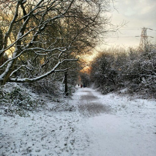 #Snow #Covered #England #Outrage #OTT #Pretty #Trees  #Narnia #Ice #Bright #Orange #Yellow #Sunrise #Morning #9am #Ginal #Smiles #January #Friday #Pylon #Ruins #It